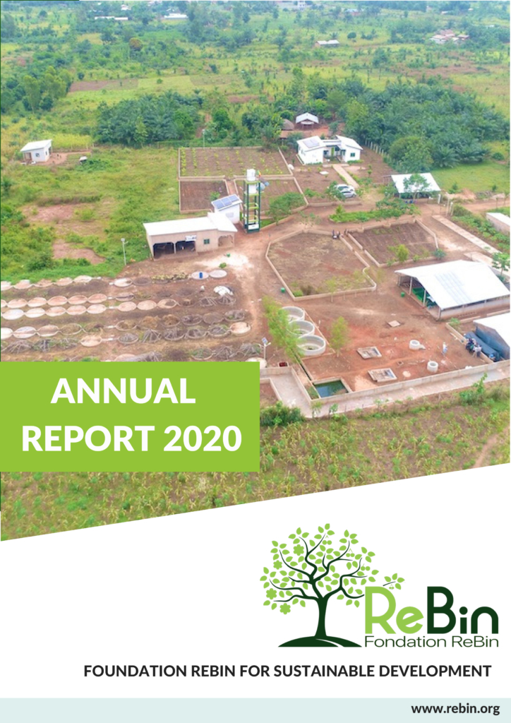 Our annual report 2020 is available